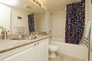 Bathroom 50 Lynn Williams 1713