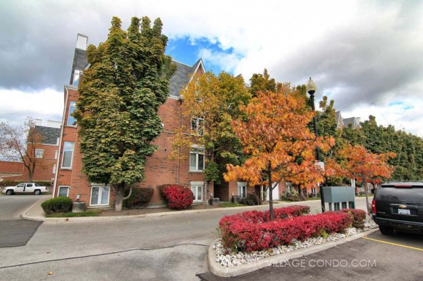 Sudbury St townhomes with fall colours